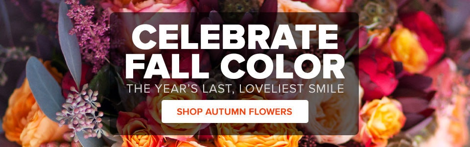 Fall Flowers & Gift Delivery