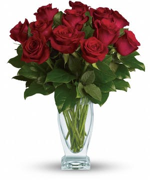 Classic Dozen Roses - Conklyn's Flowers Nationwide