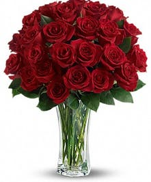 Two Dozen Roses - Conklyn's Flowers Nationwide