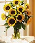 """""""Autumn Sunflowers"""""""