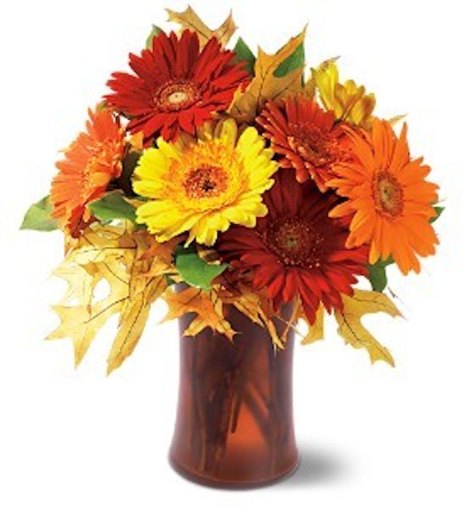 Alexandria Arlington Va Fall Flower Delivery