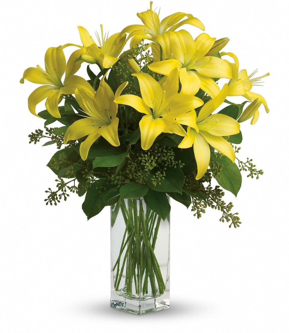 Lily sunshine simplicity of lilies about flower products lily sunshine simplicity of lilies about flower products conklyns florist washington dc opened in 1938 in arlingtonva and king street alexandria izmirmasajfo