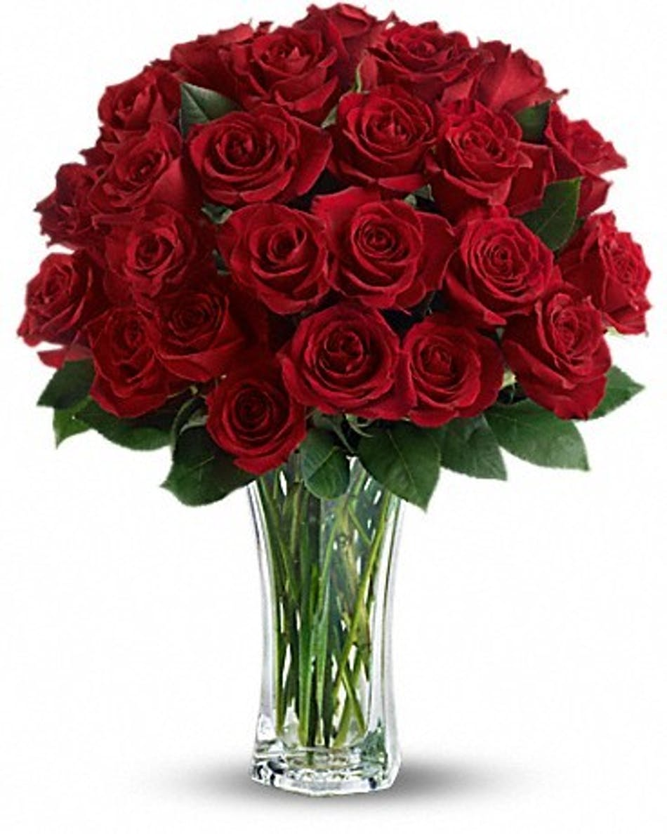 two dozen roses conklyn s flowers nationwide