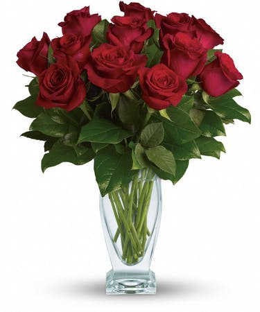 Classic Dozen Roses Conklyns Flowers Nationwide