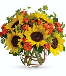 Sunny Sunflowers PM