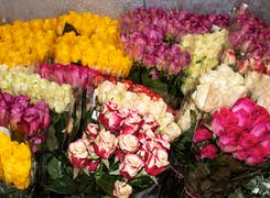 A close look at the lovely bouquets, chilling in our walk-up cooler