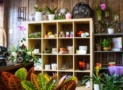 In addition to flowers and plants, Conklyn's offers a range of gifts and decorations